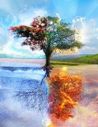 עץ האש והמים